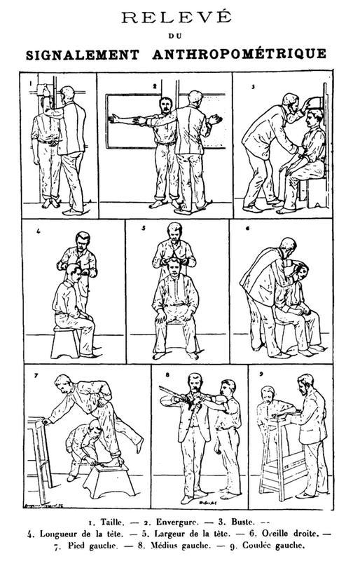 Антропометрический метод Бертильона. источник https://commons.wikimedia.org/w/index.php?curid=697274